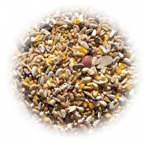$17.25 for Excello Brand Safflower Bird Seed