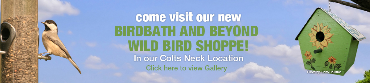 Visit Brocks Birdbath & Beyond banner for desktop